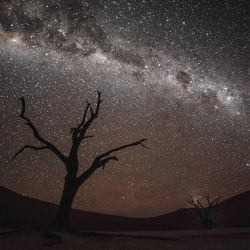 Milky Way In Deadvlei